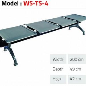 WS TS 4